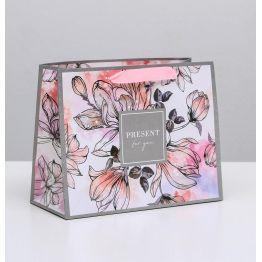 Пакет ламинированный горизонтальный Present for you, MS 23 × 18 × 10 см   4725099